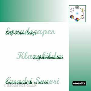 CD Zelfkennis